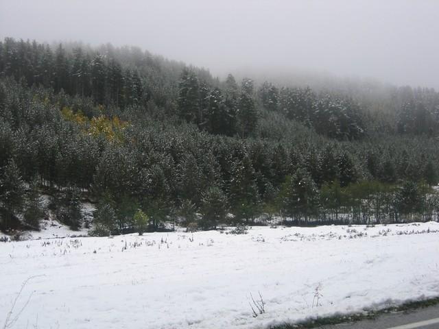 Bocchigliero 21-10-07 anticipo d'inverno